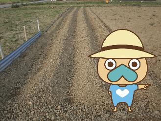 沖縄県 南城市 土と肥料の専門店 株式会社 城間農場 なんじいアンド土